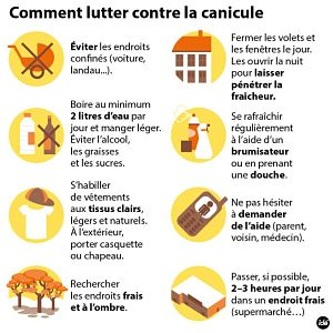 comment lutter canicule